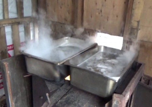 Boiling raw maple sap into maple syrup