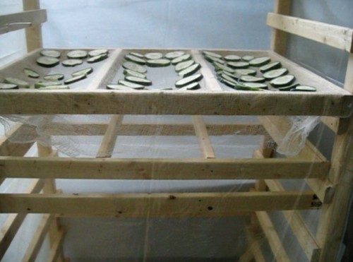 Food drying in the homemade solar dehydrator