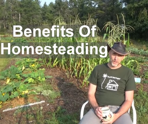 The benefits of homesteading